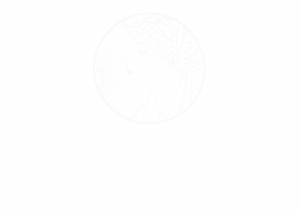 奥罗拉logo-白色